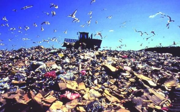 cropped-landfill.jpg
